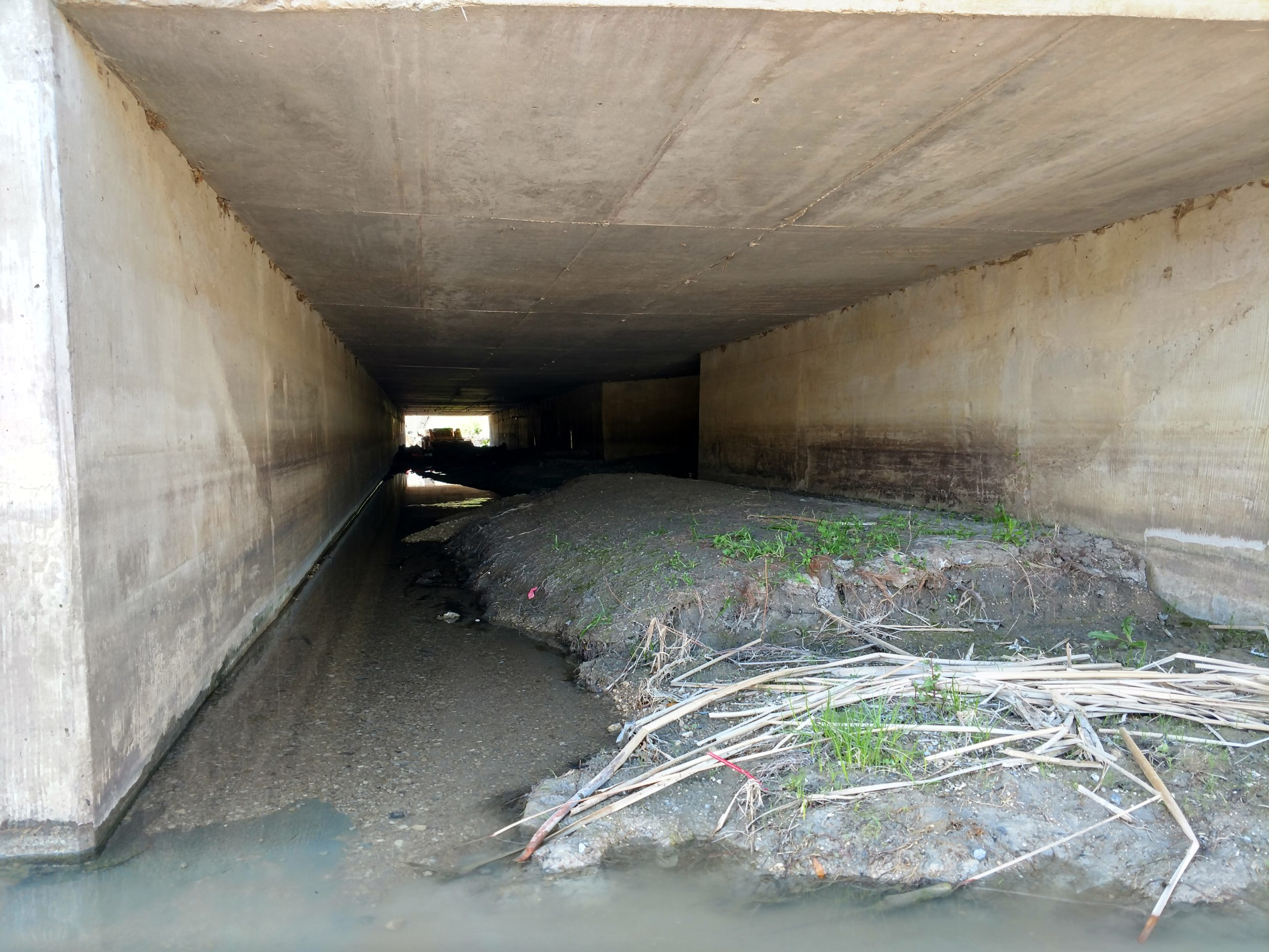 Clogged Box Culvert